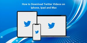 Download Twitter Video on iPhone
