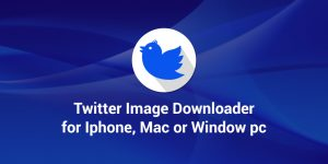 Twitter video download for iphone